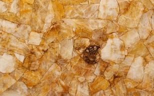 Quartz Yellow Fossil